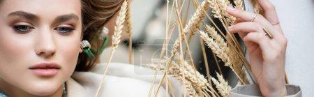 vue du dessus de la jeune femme couchée près des épillets de blé sur blanc, bannière