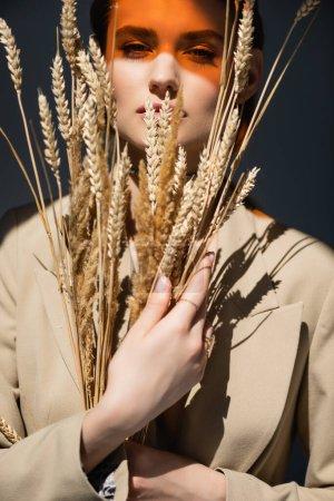 Photo pour Jeune femme en blazer regardant la caméra et tenant des épillets de blé sur gris foncé - image libre de droit