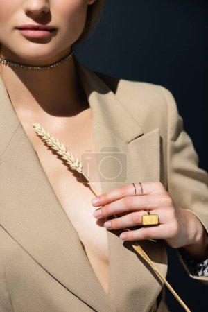 Ausgeschnittene Ansicht einer Frau in Halskette und Ringen, die Weizenstacheln auf dunkelgrau halten