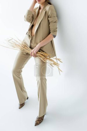 Photo for Cropped view of young model in beige suit standing while holding wheat on white - Royalty Free Image