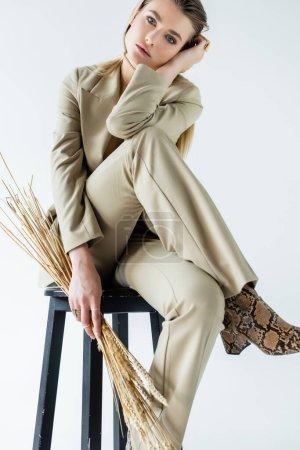 modelo joven en traje sentado en el taburete y la celebración de espiguillas de trigo en blanco