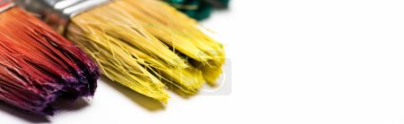Photo for Close up view of dirty paintbrushes on white background, panoramic shot - Royalty Free Image