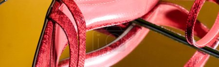 Photo for Closeup of elegant pink snakeskin heeled sandals on mirror surface, banner - Royalty Free Image