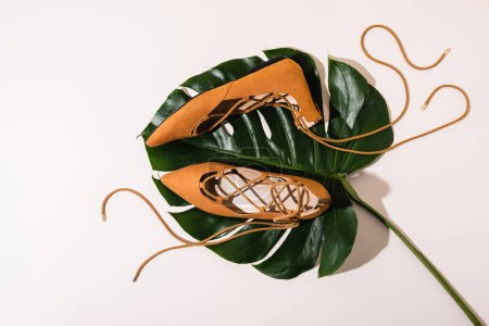 top view of flat suede brown shoes on palm leaf on beige background