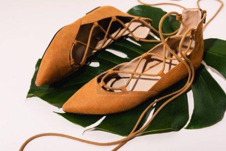 Photo pour Chaussures plates en daim marron sur feuille de palmier sur fond beige - image libre de droit