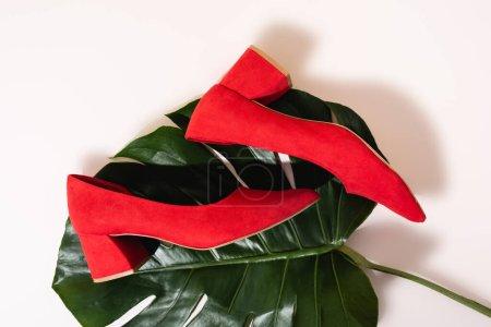 Photo pour Vue du dessus de chaussures en daim rouge marron sur feuille de palmier sur fond beige - image libre de droit