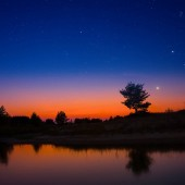 small quiet lake with tree silhouette on the coast under a starry sky, twilight natural background
