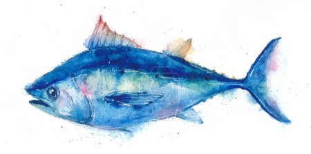 Watercolor realistic illustration of fish, tuna on...
