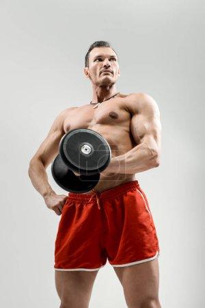 portrait  bodybuilder with weight, on grey background