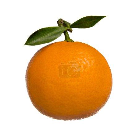 Photo pour Une mandarine avec feuille verte, sur fond blanc, isolé - image libre de droit