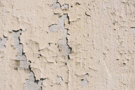 Photo pour Image plein cadre de fond mural gercé - image libre de droit