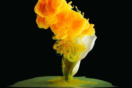 Photo pour Vue rapprochée de la fleur de Lys Calla beau et peinture orange vif sur fond noir - image libre de droit