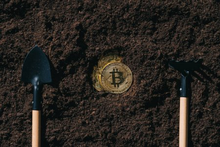 top view of arranged gardening tools and golden bitcoins on ground