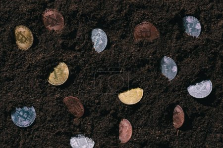 top view of arranged various bitcoins in ground