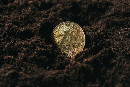 close up view of golden bitcoin in ground