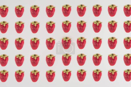 Rows of strawberry isolated on white background