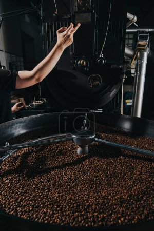 Male hands set up machine for professional coffee production