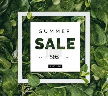 square white frame with words summer sale and beautiful fresh green leaves with dew drops