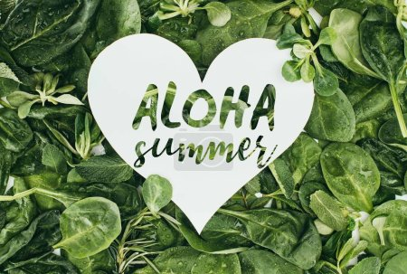 white heart symbol with words aloha summer and beautiful wet green leaves