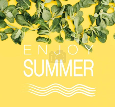 beautiful fresh green leaves and words enjoy summer isolated on yellow