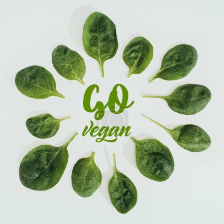 Photo for Top view of beautiful fresh green leaves and words go vegan isolated on grey - Royalty Free Image
