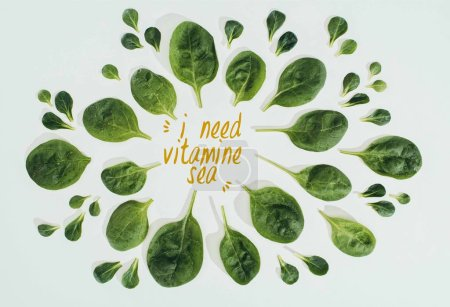top view of beautiful fresh green leaves and words i need vitamine sea isolated on grey