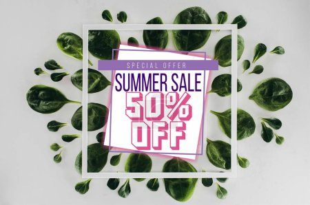 top view of fresh green leaves and white square frames with text summer sale on grey
