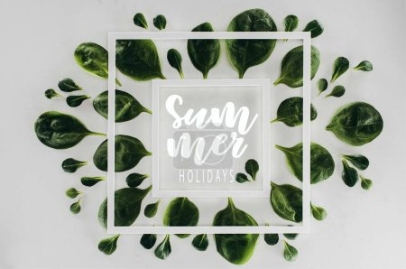 top view of fresh green leaves and white square frames with words summer holidays on grey