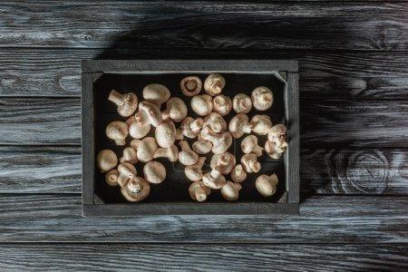 Ansicht von ungekochten Champignon-Pilzen in Schachtel auf grauer Holzoberfläche