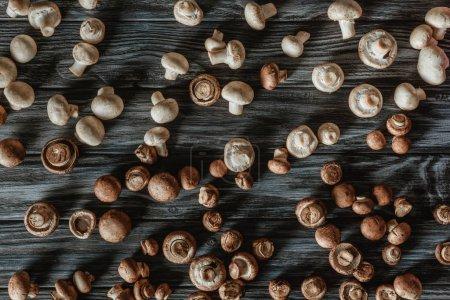 vue de dessus des champignons champignon blanc et brun sur la surface en bois