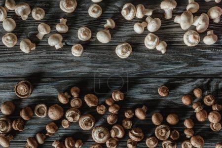 Photo pour Vue de dessus des champignons champignon blancs et bruns séparés sur la surface en bois - image libre de droit