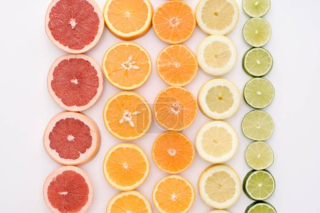 top view of various citrus fruits slices in rows on white surface