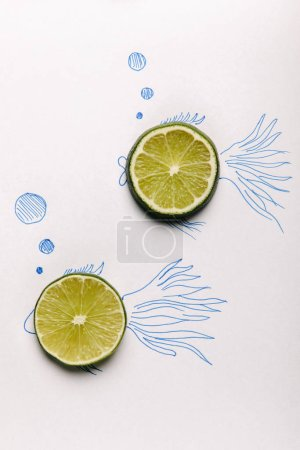 top view of lime slices on fishes drawing on white