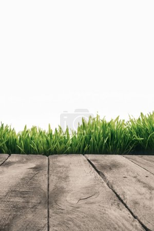 full frame of wooden planks and green grass isolated on white