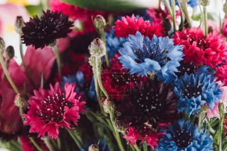 close-up view of beautiful colorful cornflowers, selective focus