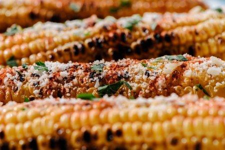 Photo pour Foyer sélectif de délicieux maïs grillé avec du sel, du persil et des épices chili - image libre de droit
