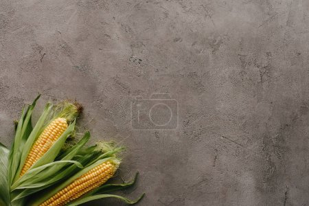 top view of raw corn cobs on grey concrete surface