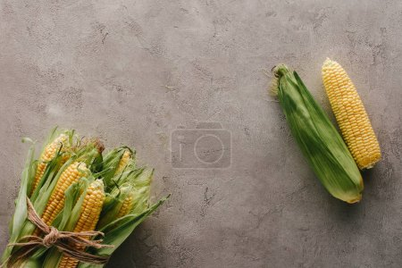 top view of fresh corn cobs tied with rope and one corn apart on grey concrete surface