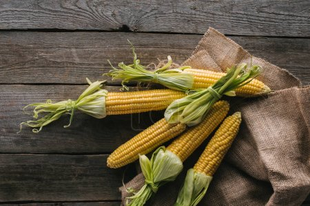 Photo for Top view of fresh raw corn cobs on sack cloth on wooden tabletop - Royalty Free Image