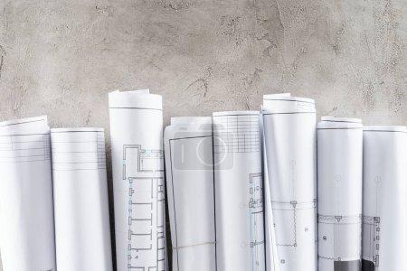 Photo pour Vue de dessus des plans disposés placés en rangée sur la surface du béton - image libre de droit