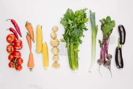 flat lay with fresh autumn vegetables arranged isolated on white