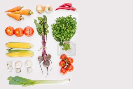 Photo for Flat lay with fresh autumn vegetables arranged isolated on white - Royalty Free Image