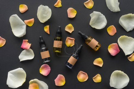 top view of scattered bottles of natural oils and rose petals isolated on black, beauty concept