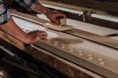 recadrée tir de bois rabot menuisier avec plan de main à l'atelier