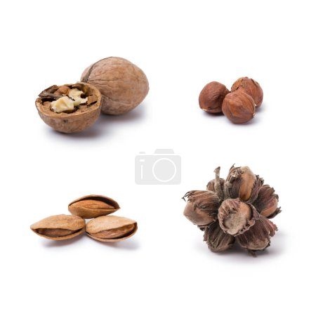 Variety of nuts isolated on white background