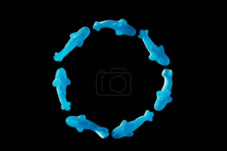 top view of circle of blue jelly candies in shape of dolphins isolated on black