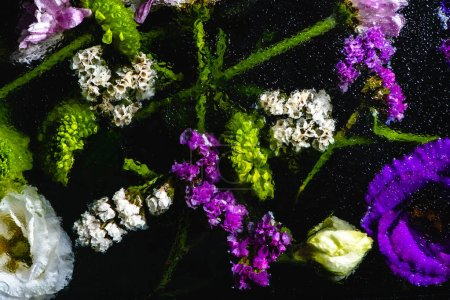 top view of beautiful wet flowers and green stems on black