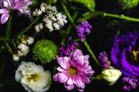 top view of beautiful various wet flowers on black background
