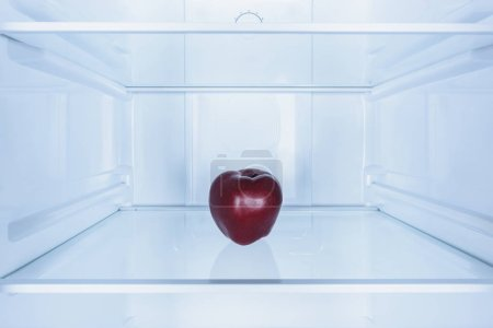 one burgundy apple on shelf in fridge