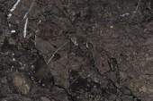 """Постер, картина, фотообои """"Абстрактные пустой темную текстуру мрамора"""""""